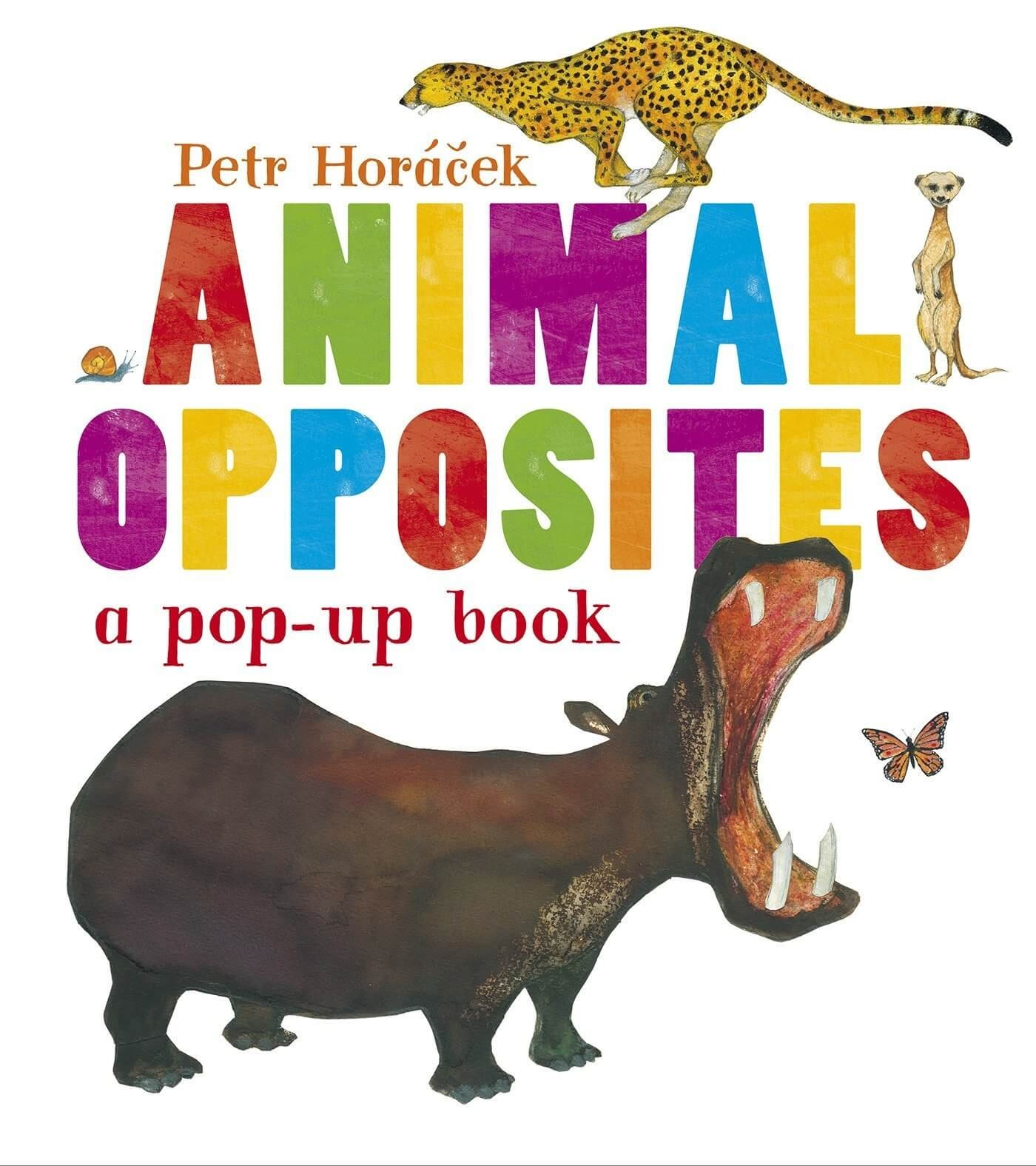 Animal Opposites Pop up Book