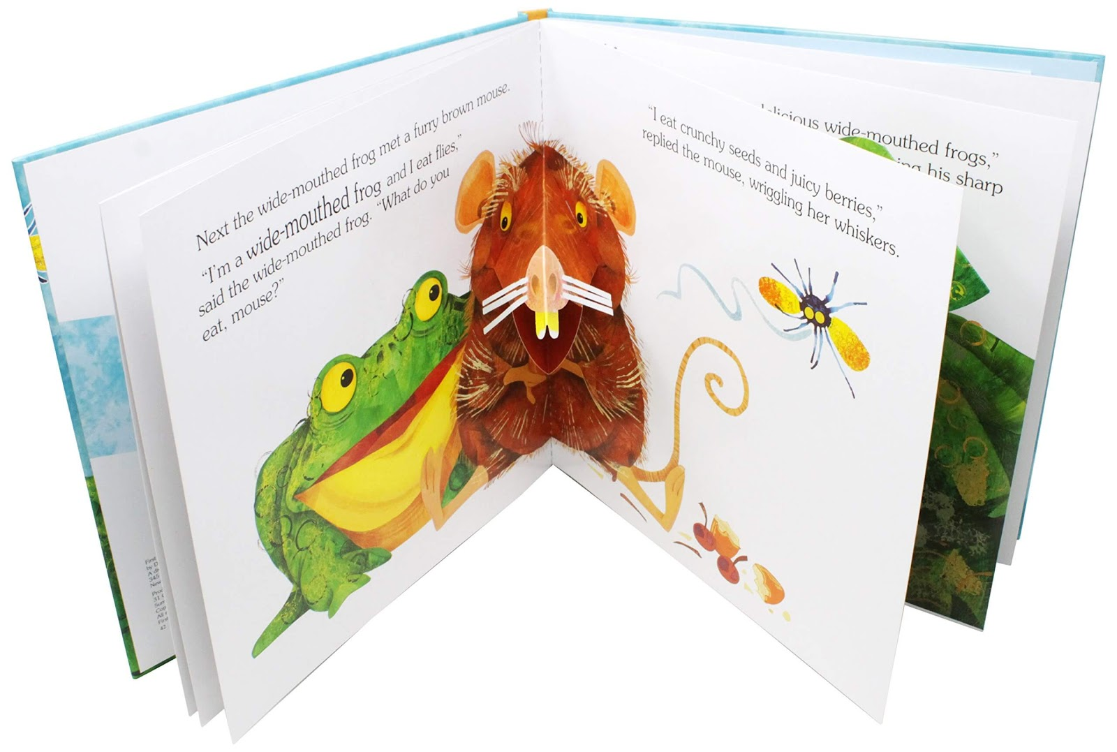 The Wide-Mouthed Frog pop up book