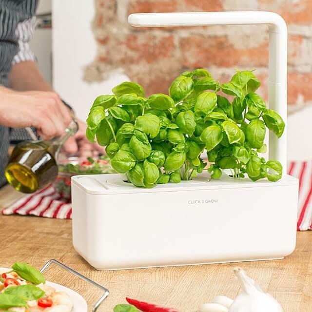 Smart Garden Grow Kit