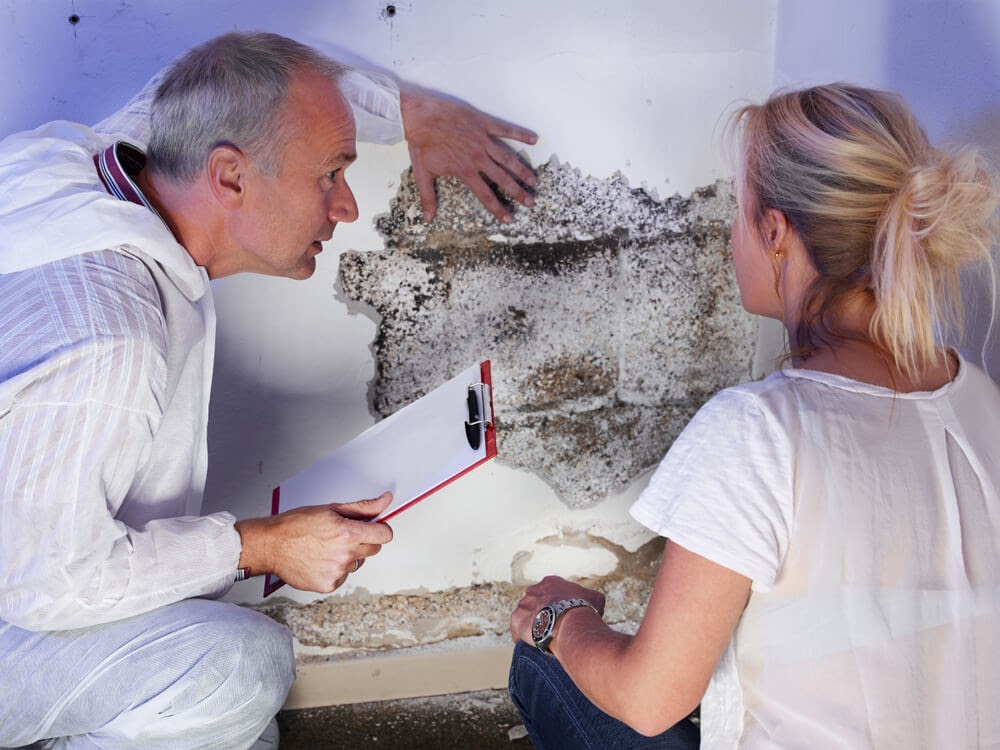 women and male techinician looking at mold