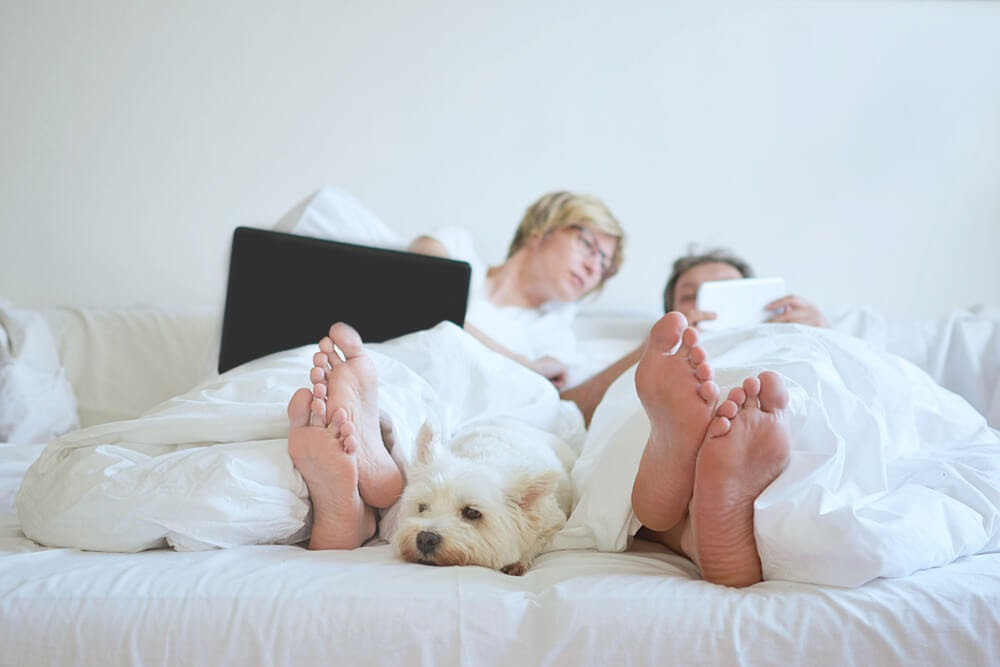 couple relaxing in bed on tablets