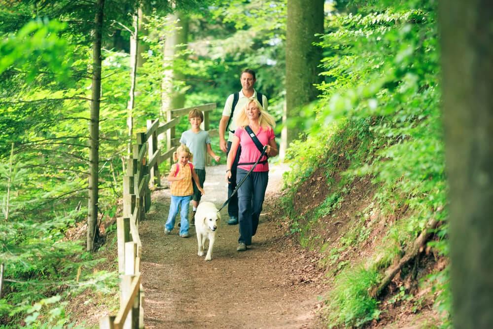 Family walks dog on trail