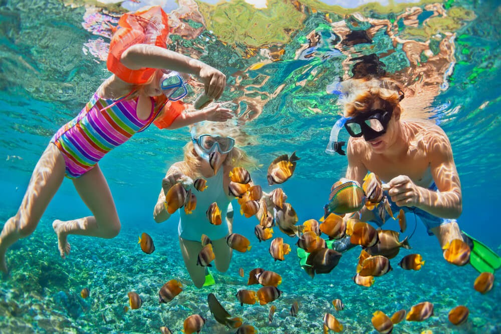 Two kids and an adult snorkel with colorful fish
