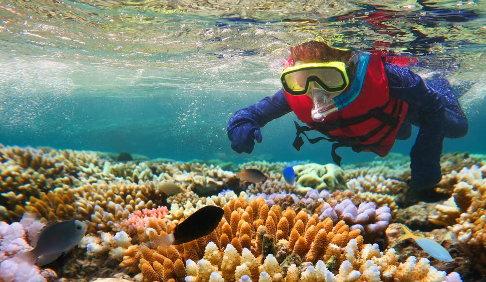 Snorkeler wearing a life jacket in a shallow reef