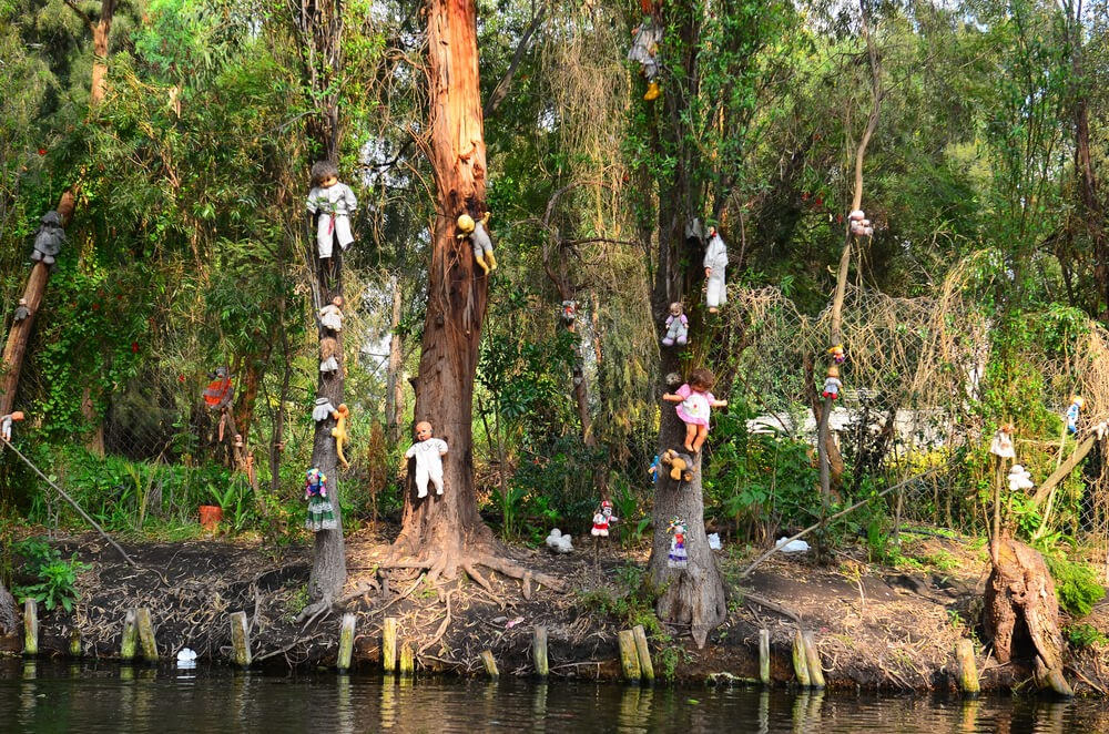 Isla de las Munecas in Mexico. Trees covered in dolls in various stages of disrepair.