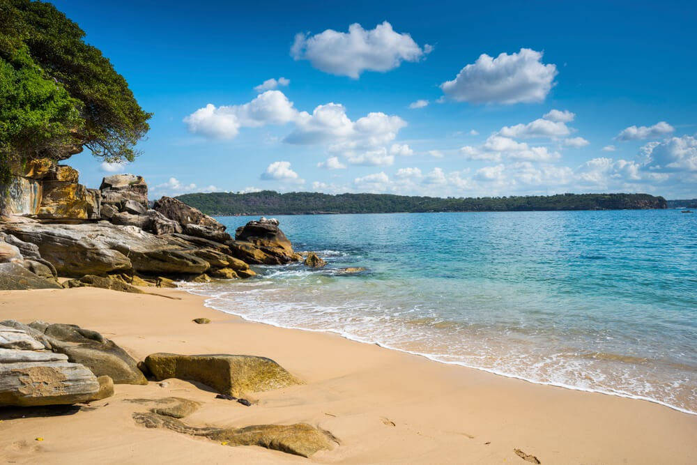 Lady Bay Beach, Sydney Australia