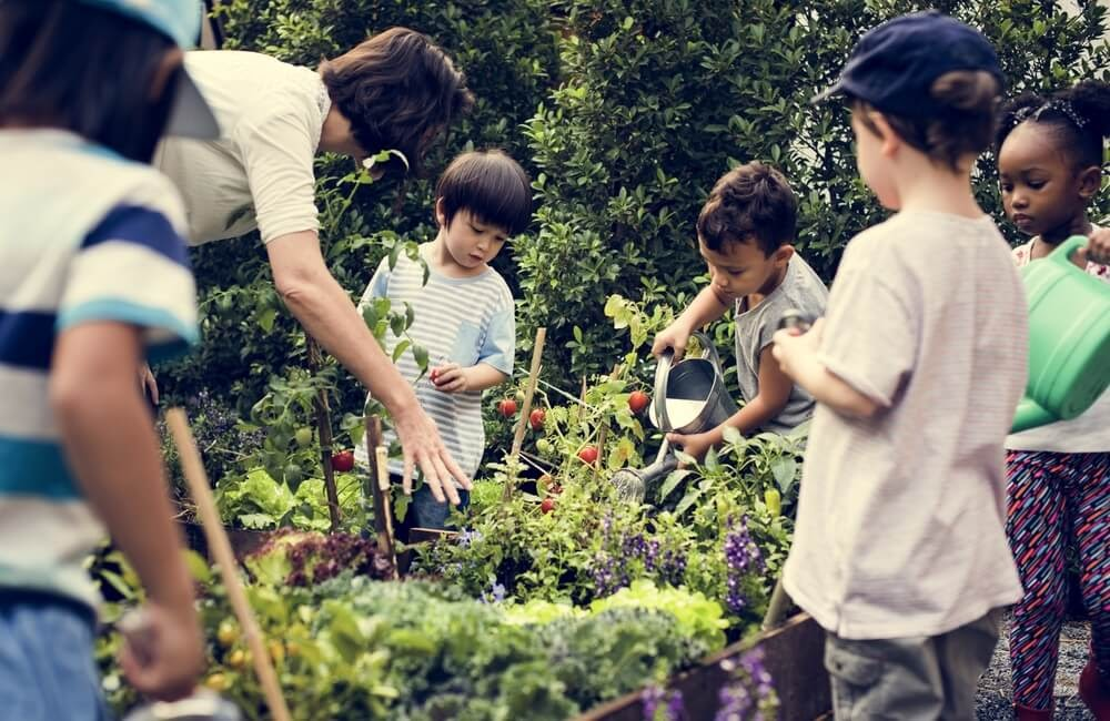 Kids gather around a garden bed and water plants.