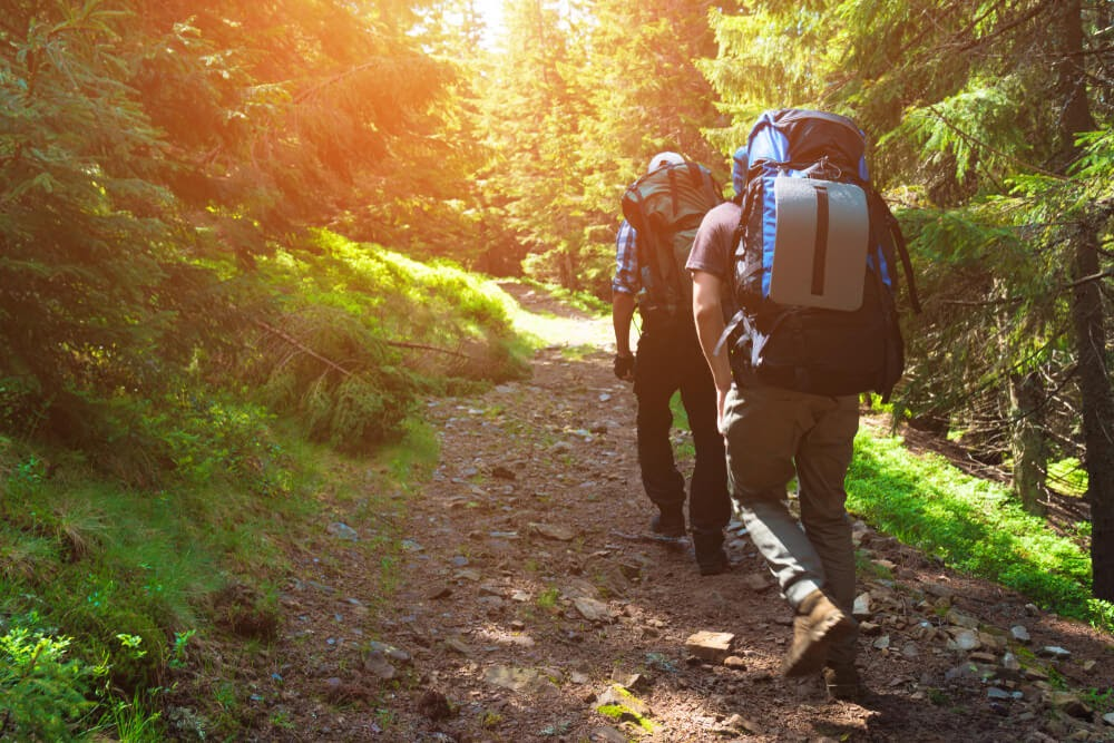 Two guys hiking in the woods.