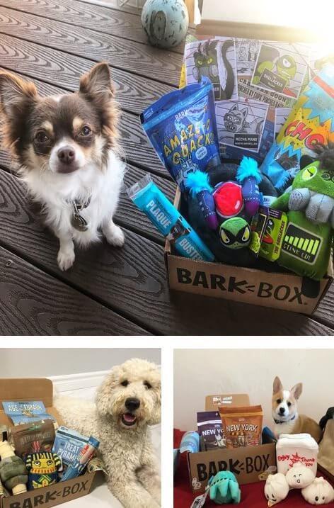 BarkBoxsubscription box.