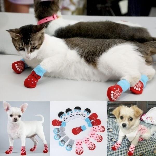 Cats wearing kitten mittens