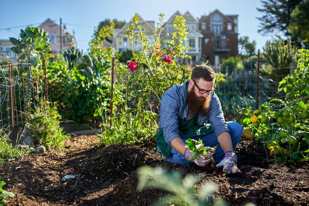 man gardening in soil