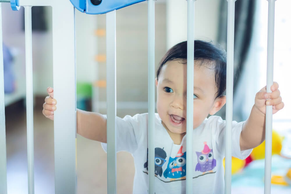 Baby looking through baby gate