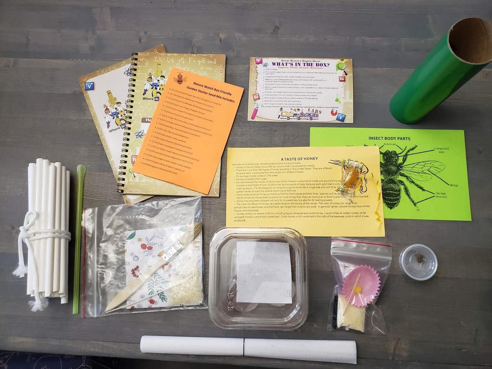 SciKidz Save the Bees box