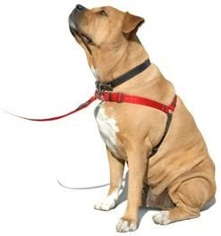 Softouch SENSE-ation No-Pull Dog Harness