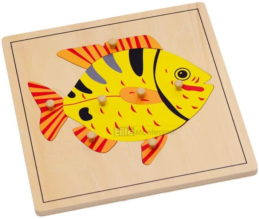 Elite Montessori Fish Puzzle Preschool Learning Material