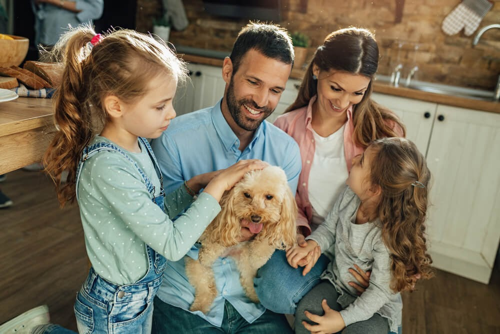 Family cuddling with their poodle mix in the kitchen