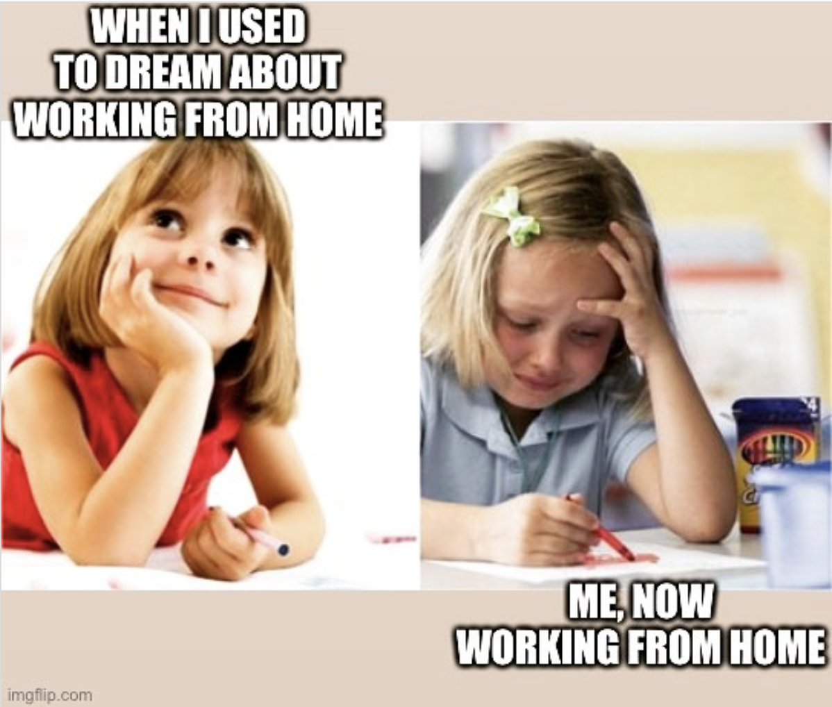 working from home dreaming vs reality