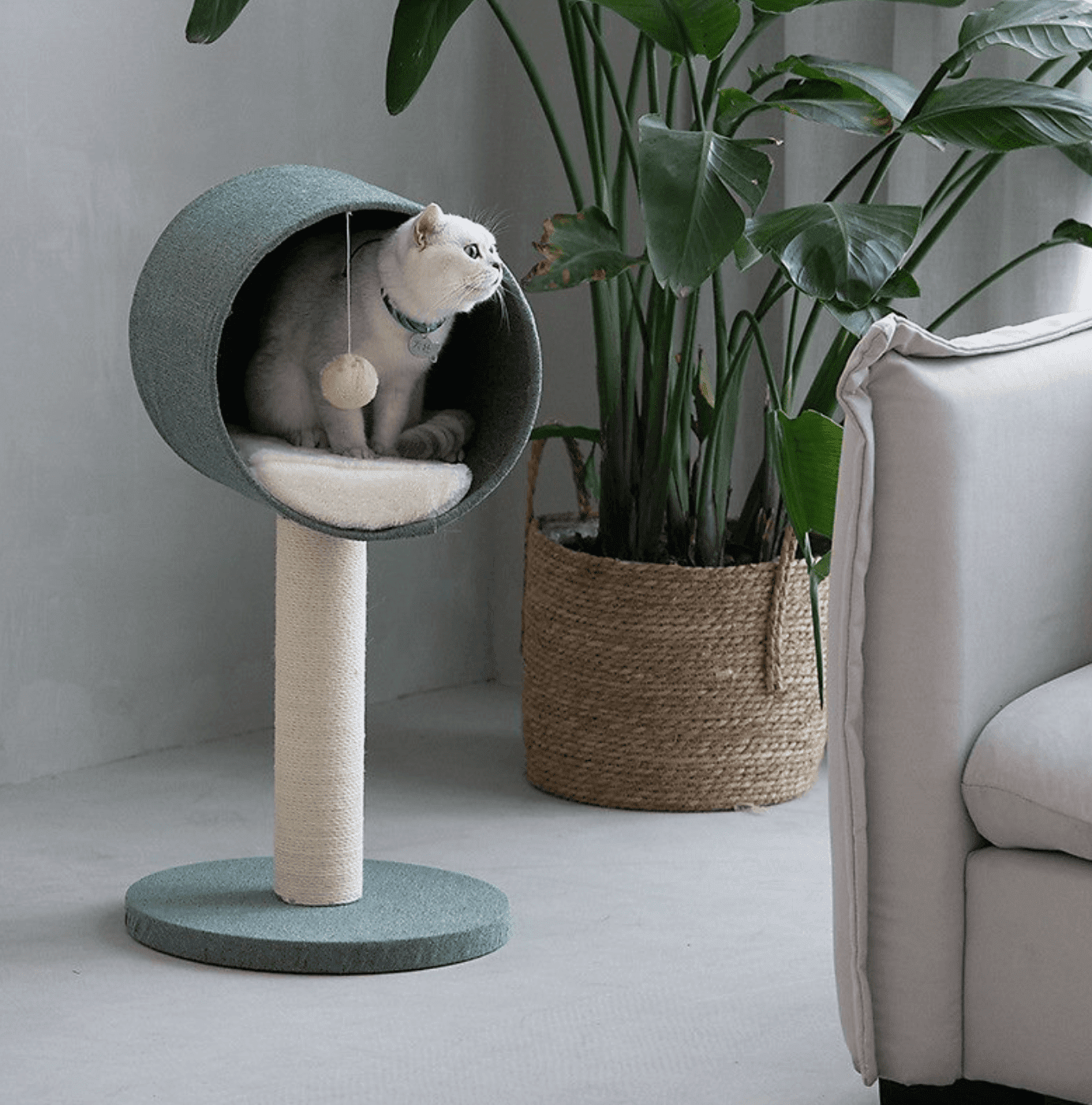 Lovely Caves Minimalist Style Cat Tree