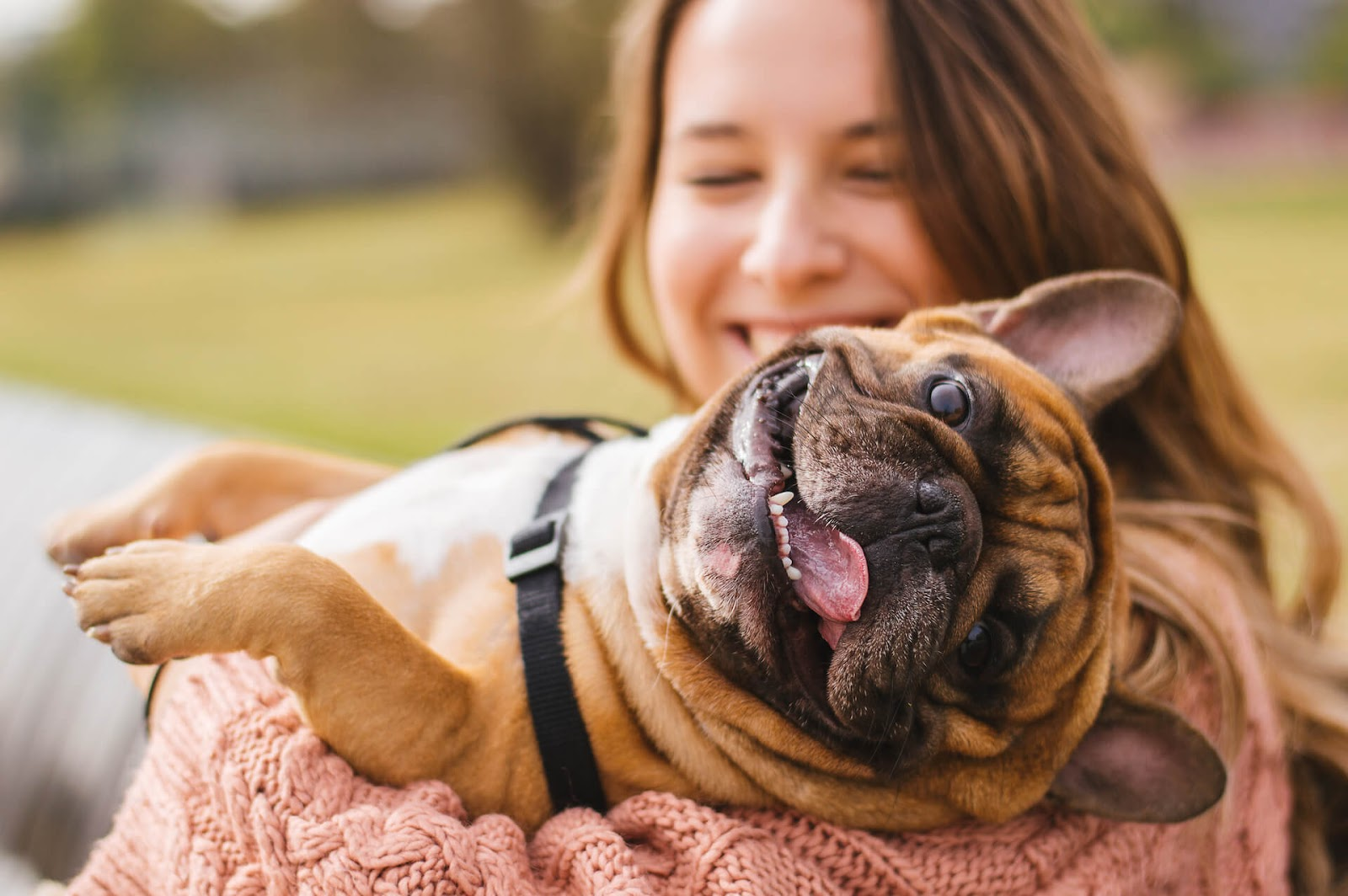 happy dog being held by a happy woman