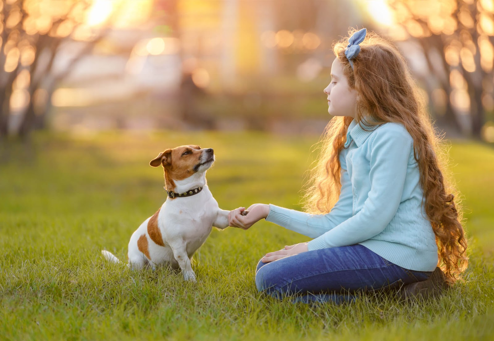 Girl playing with her small dog in a park