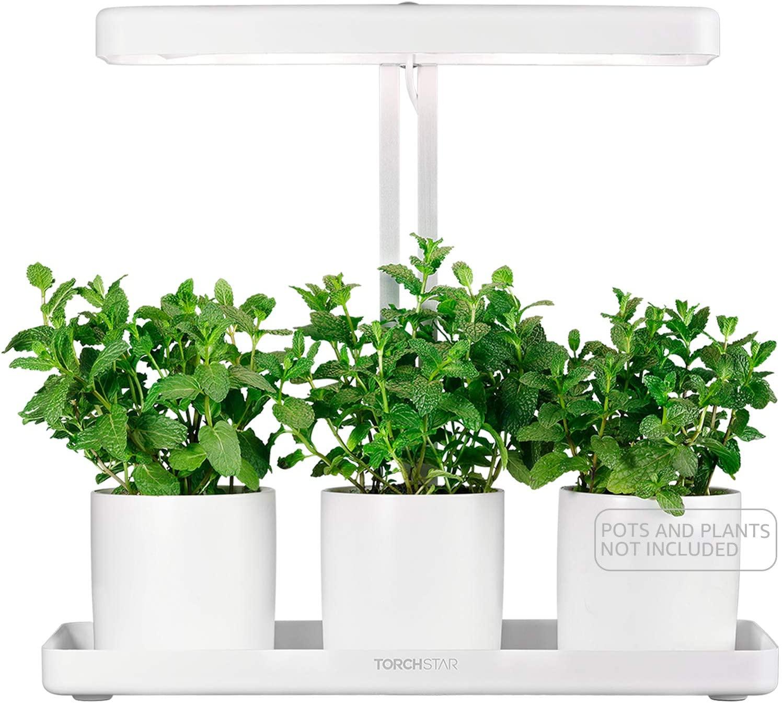 Torchstar Indoor Garden Kit