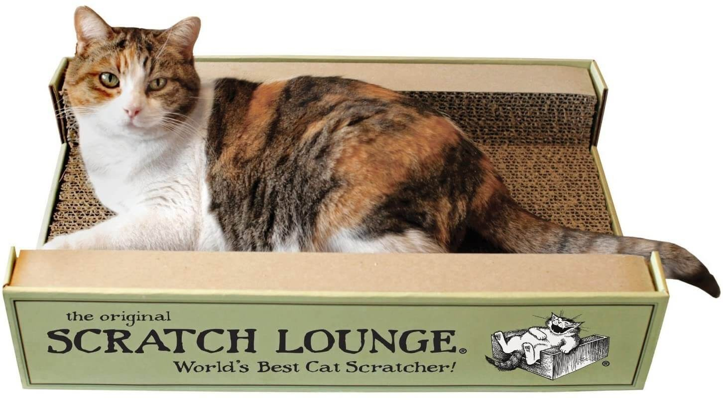 The Scratch Lounge