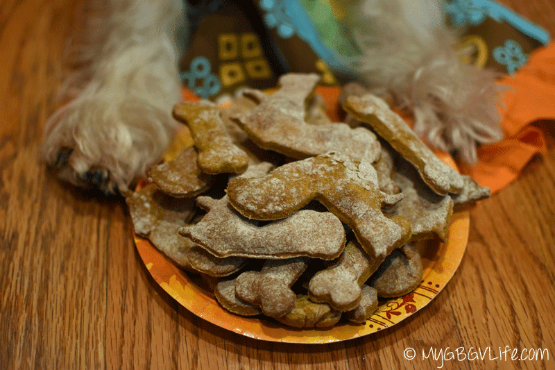 Dog pumpkin cookies