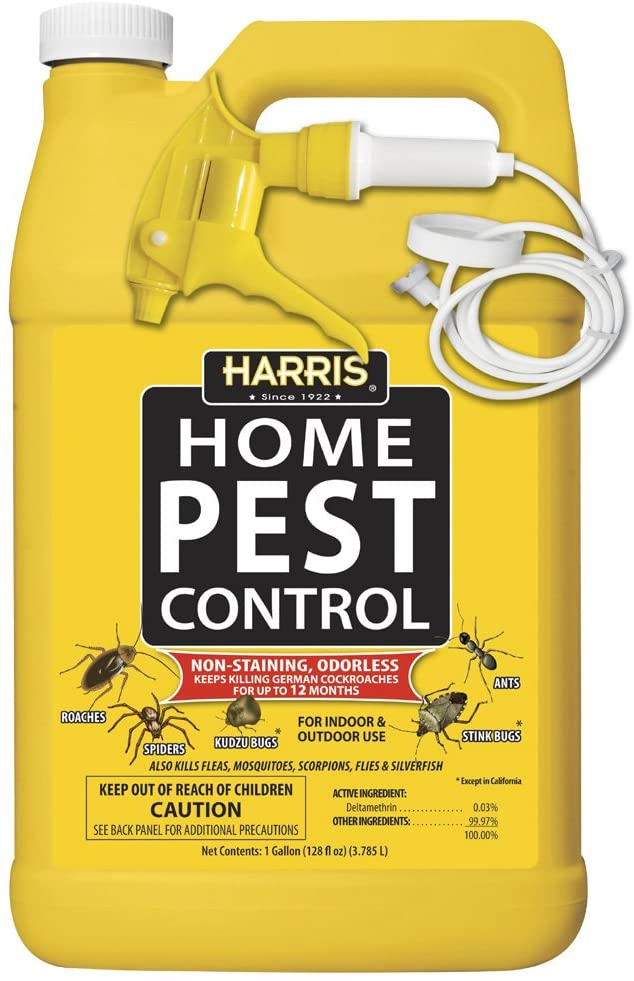Concentrated Insecticide