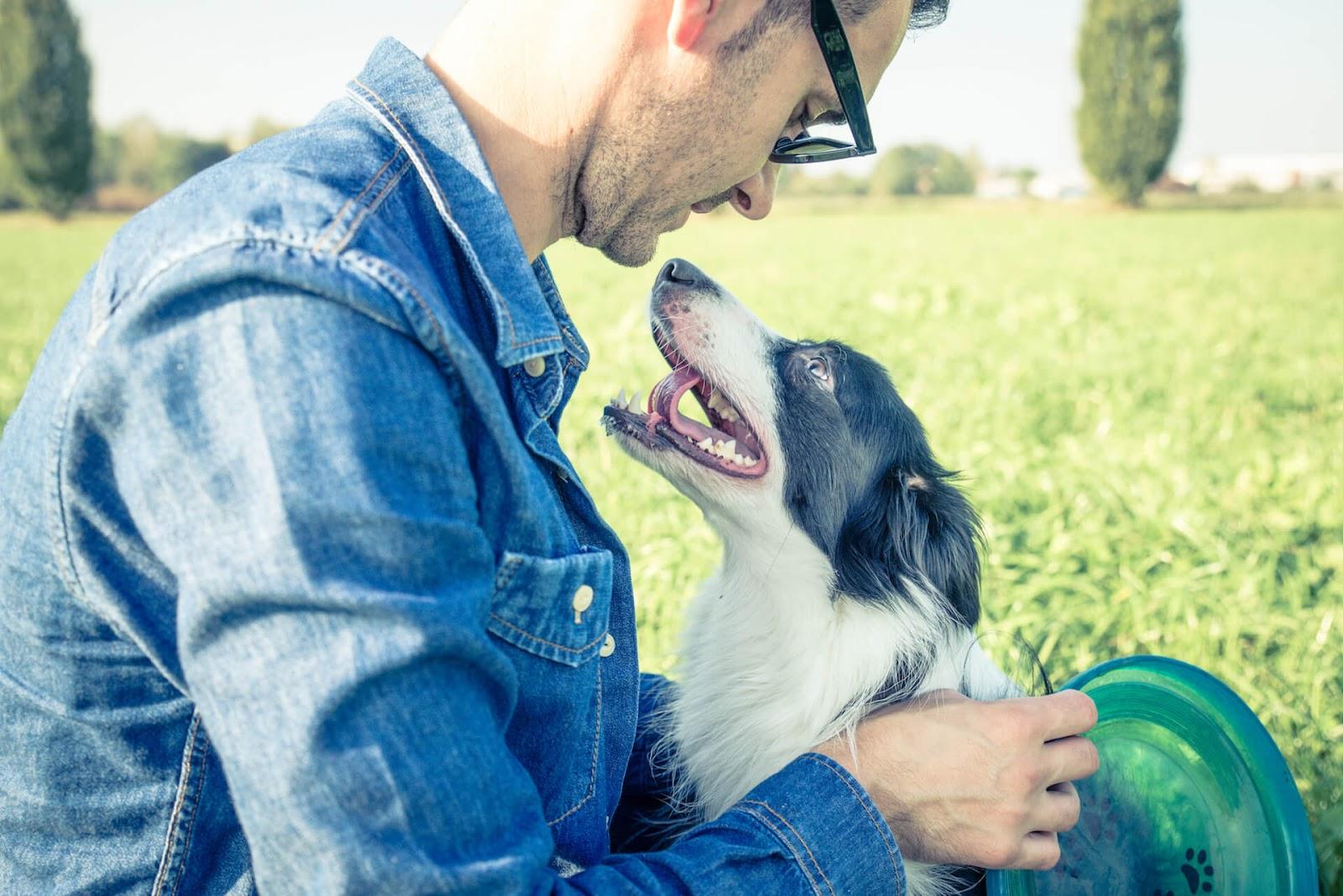 Man and enjoying dog outside