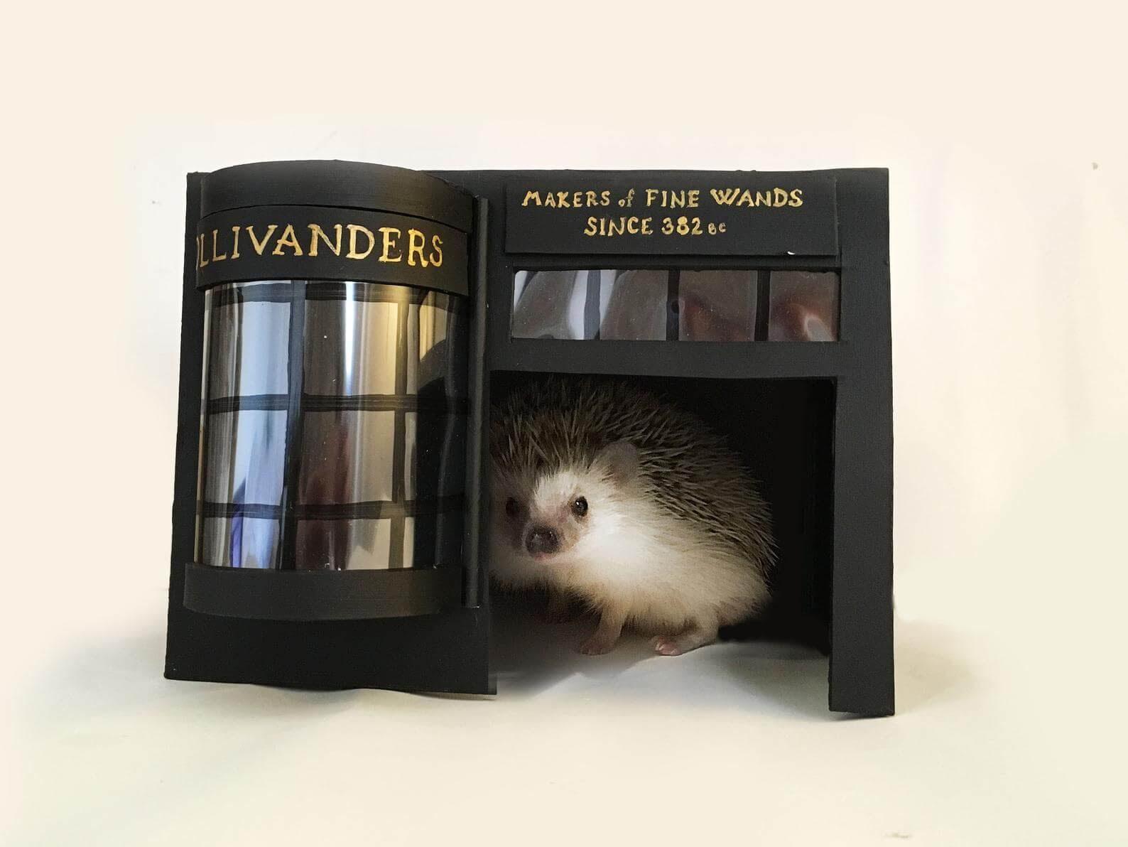 Hedgehog in homemade Ollivanders Fine Wands home