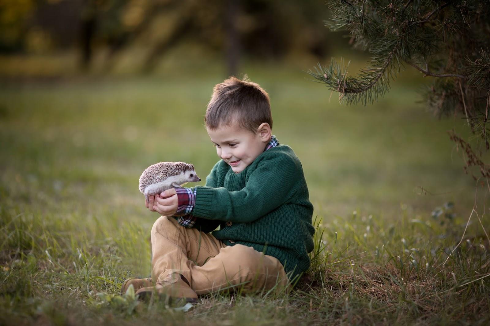 Little boy holding a hedgehog outside