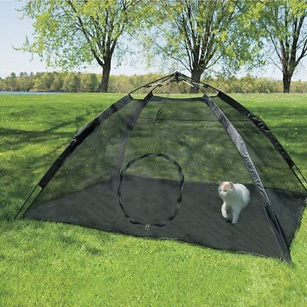 Outback Jack Happy Habit Tent
