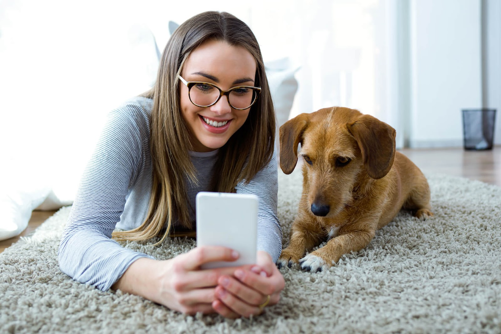 Woman and dog looking at owners with her phone