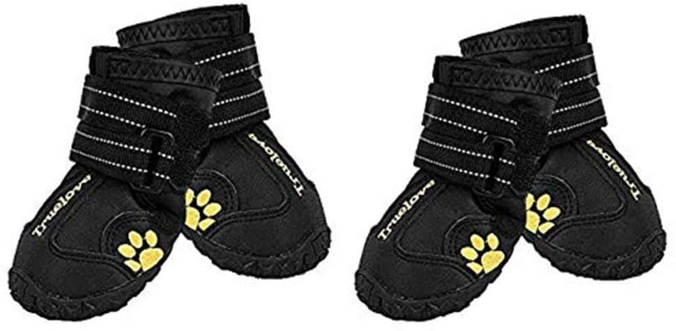 Expawlorrer Dog Boots