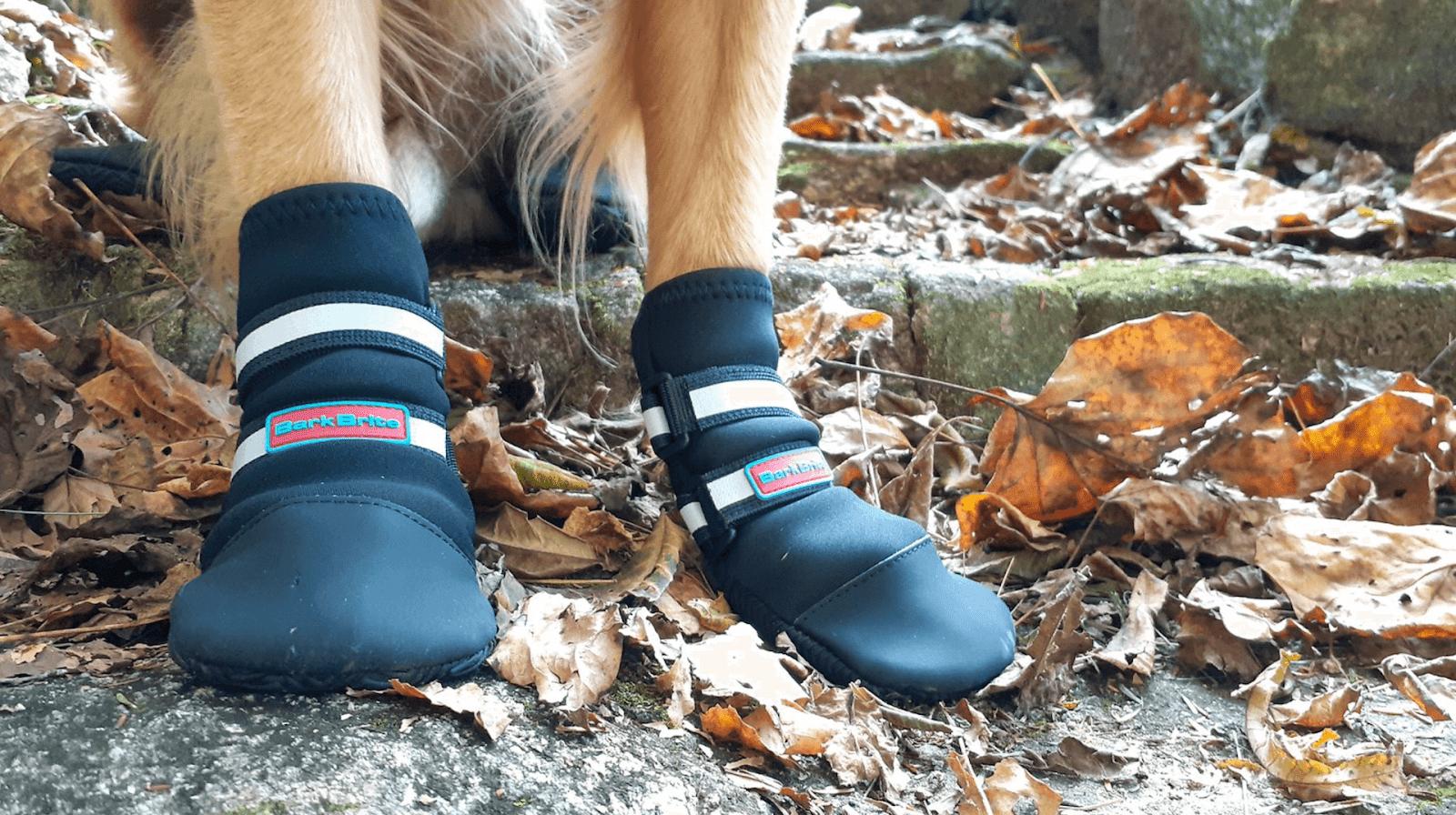 Bark Brite Neoprene Dog Boots