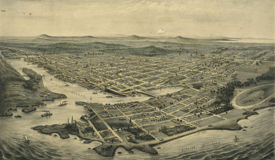 Illustration of coastal area with street grid, properties and forests with ships in foreground.