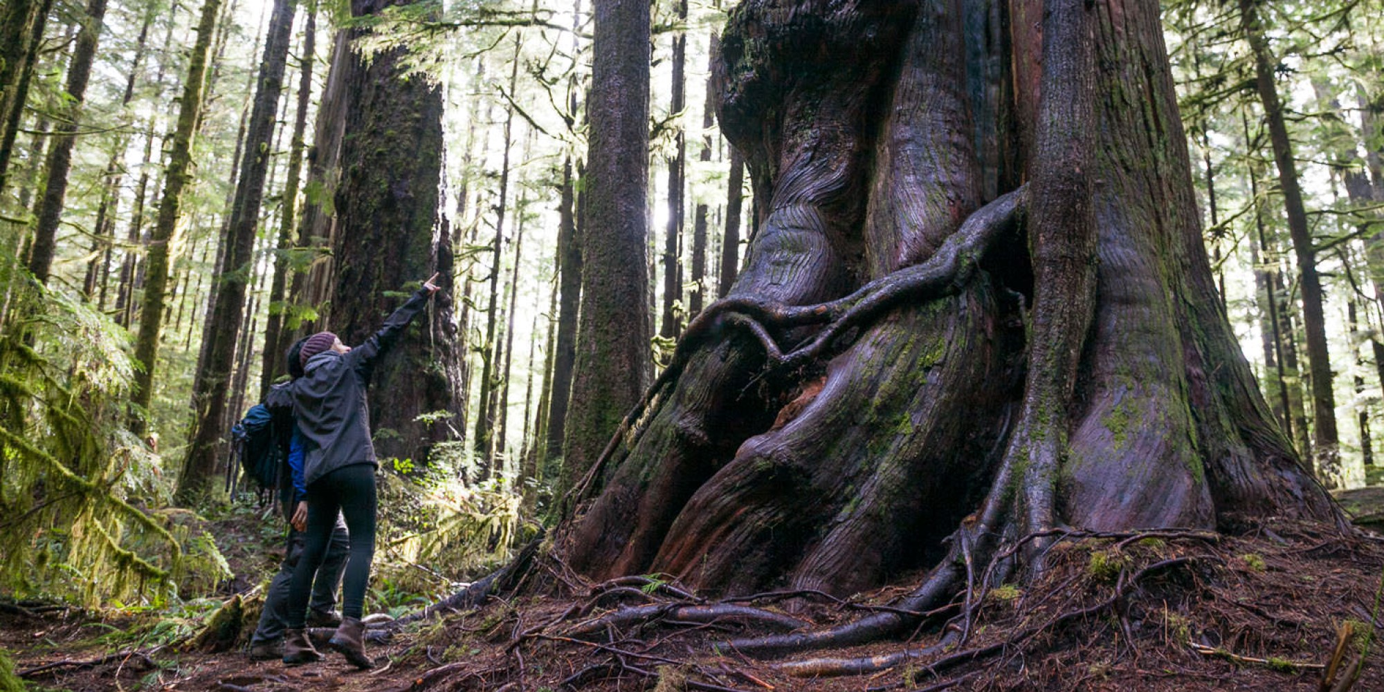 Time for a staycation: Our guide to Vancouver Island's hidden gems