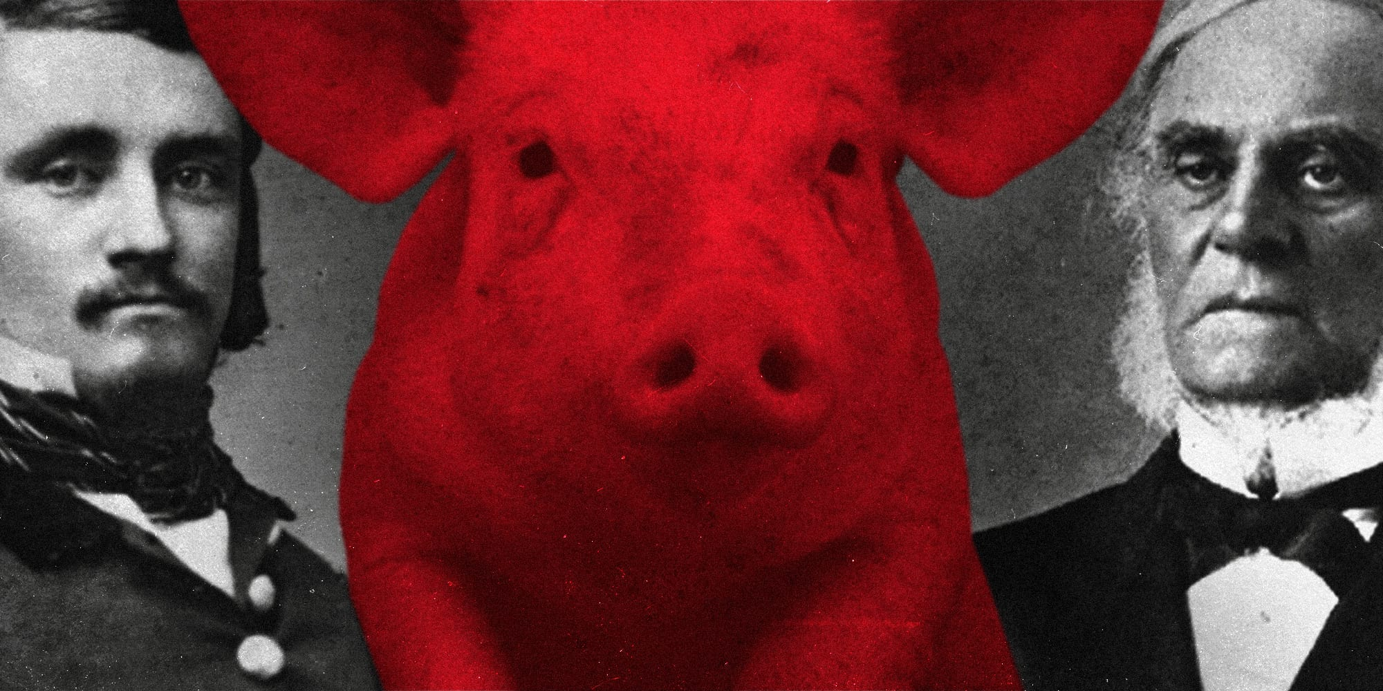 That time we went to war with the Americans over a pig