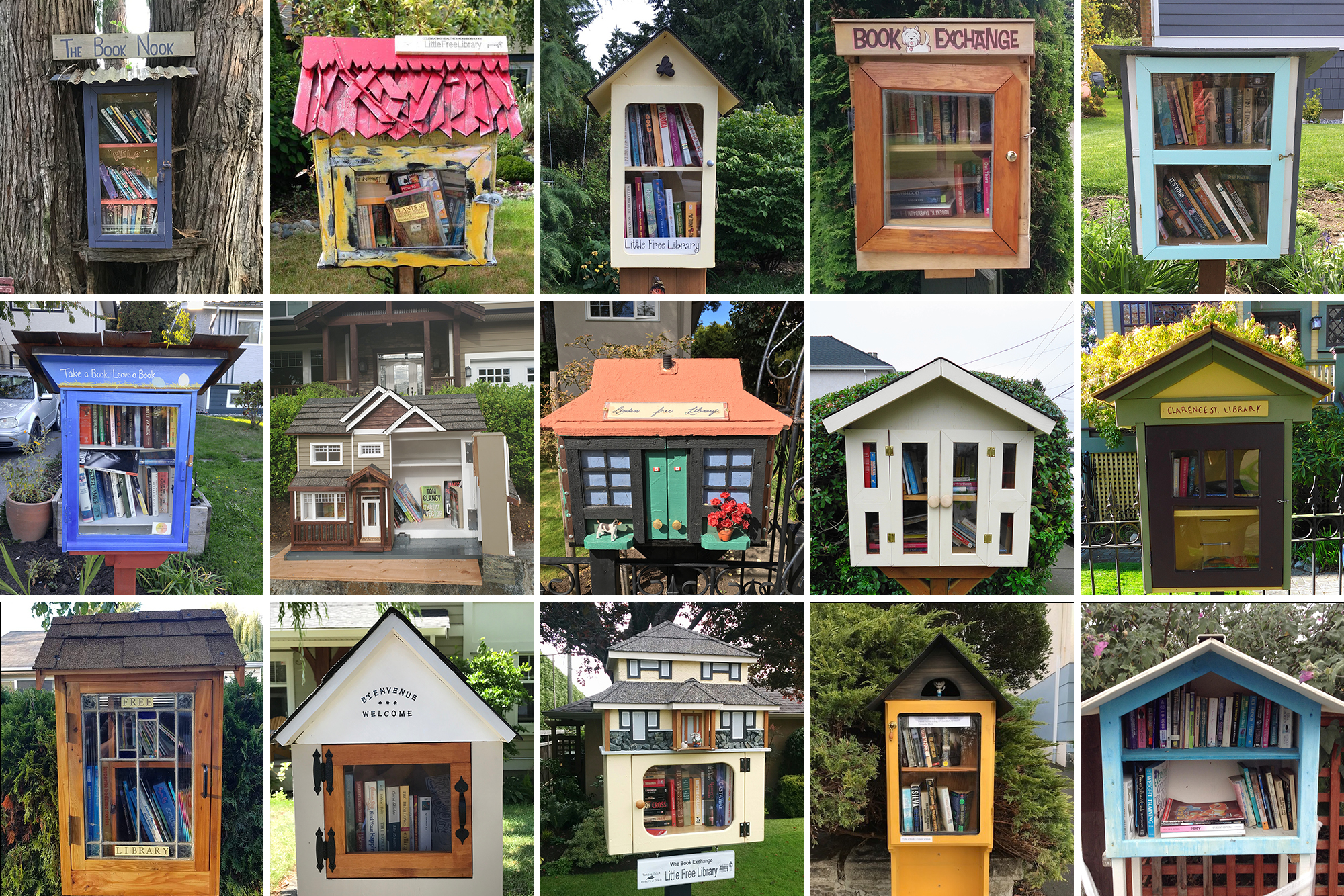 Canada's biggest community of little free libraries has only grown stronger through COVID-19