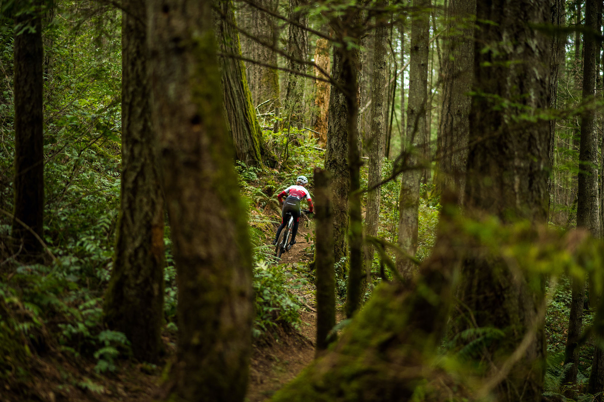 Bikes, bears, and biologists: can mountain biking coexist with nature?