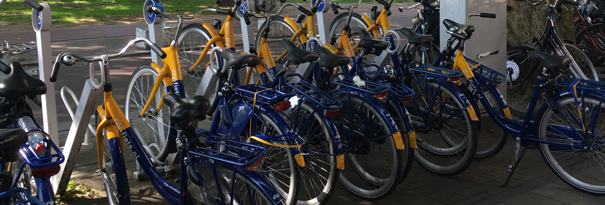 Bikeshare bicycles parked at a bicycle rack