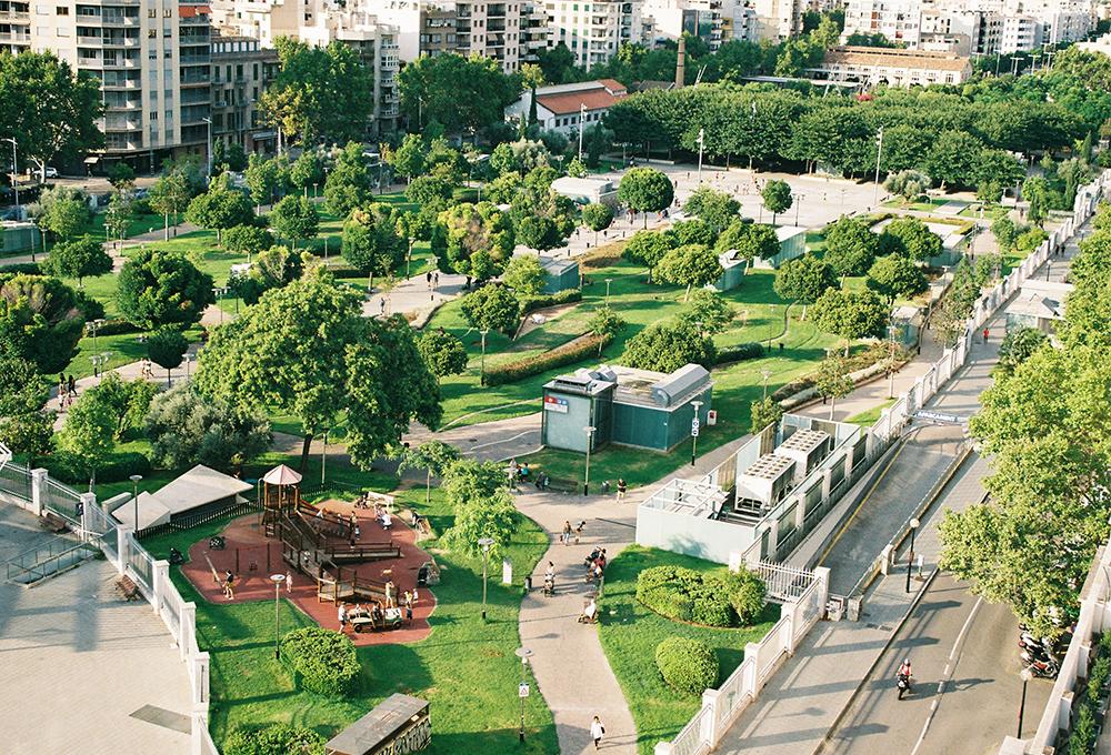 Park with trees next to dense urban environment