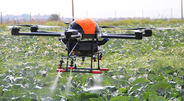 An aerial agricultural drone spraying liquid on crops