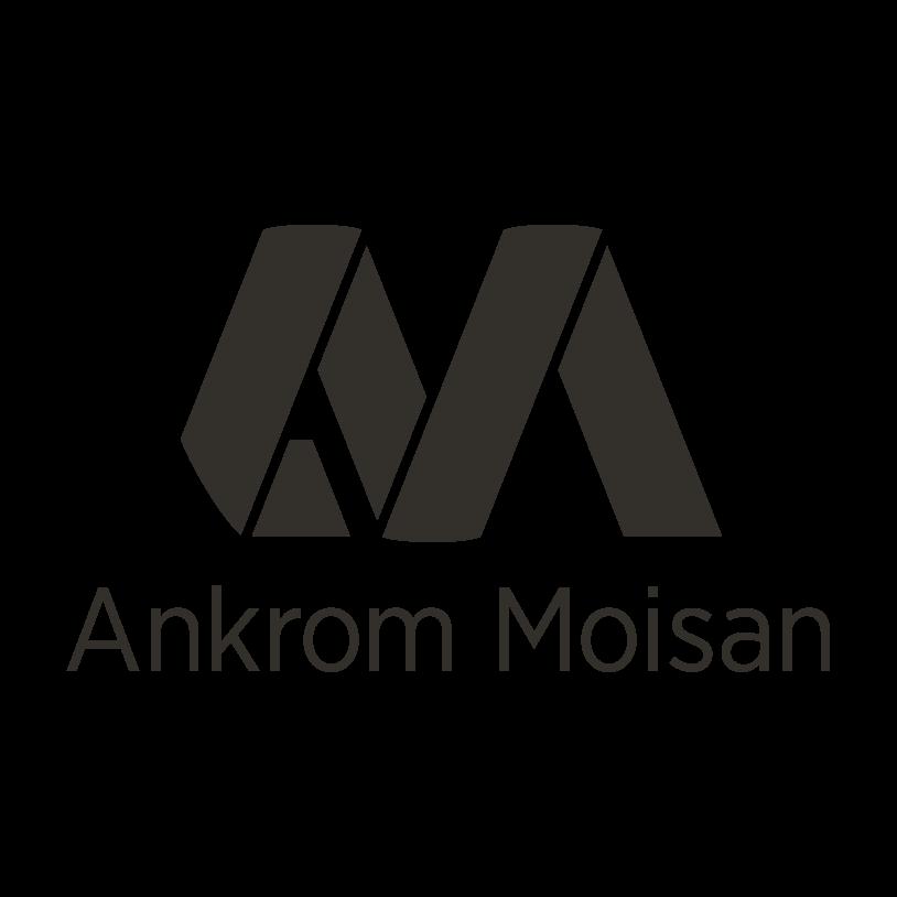 Ankrom Moisan W9