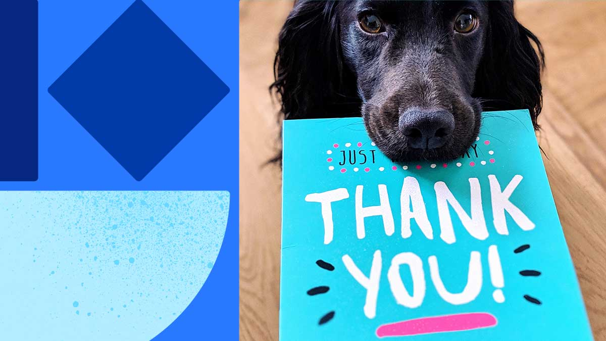 "Photo of a black dog holding a card in its mouth. The card says ""Thank you"" in white with some lines for emphasis. On the left side of the image is are blue shapes on a blue background."
