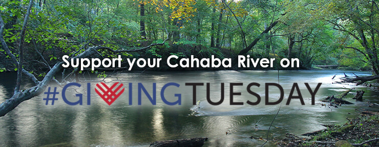 "An ad with white words ""Support your Cahaba River on"" above blue, red, and black words ""#GIVINGTUESDAY"". The words are shown on a background photo of a small river with green, leafy trees on its bank."