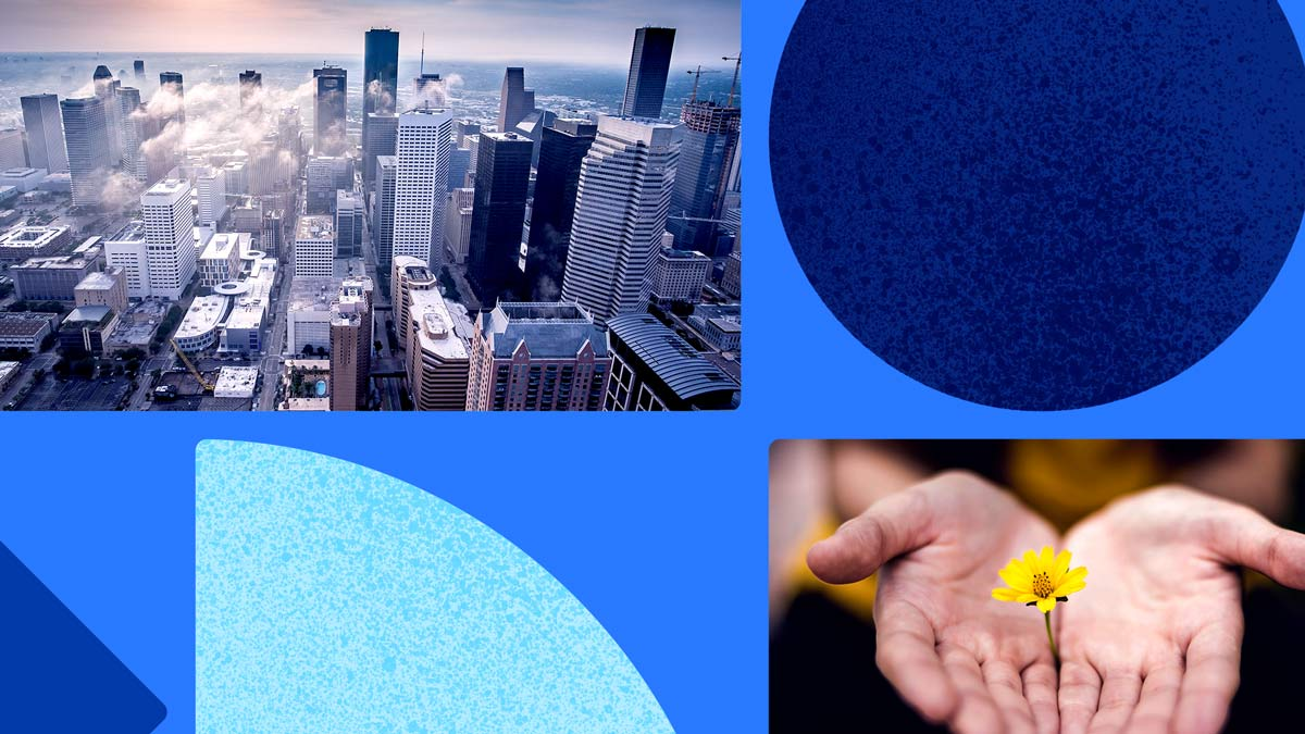 Two photos: one of an overhead view of a city with clouds and high rise buildings, the other of two light-colored hands holding a small yellow wildflower. Both photos are on a blue background featuring blue shapes.