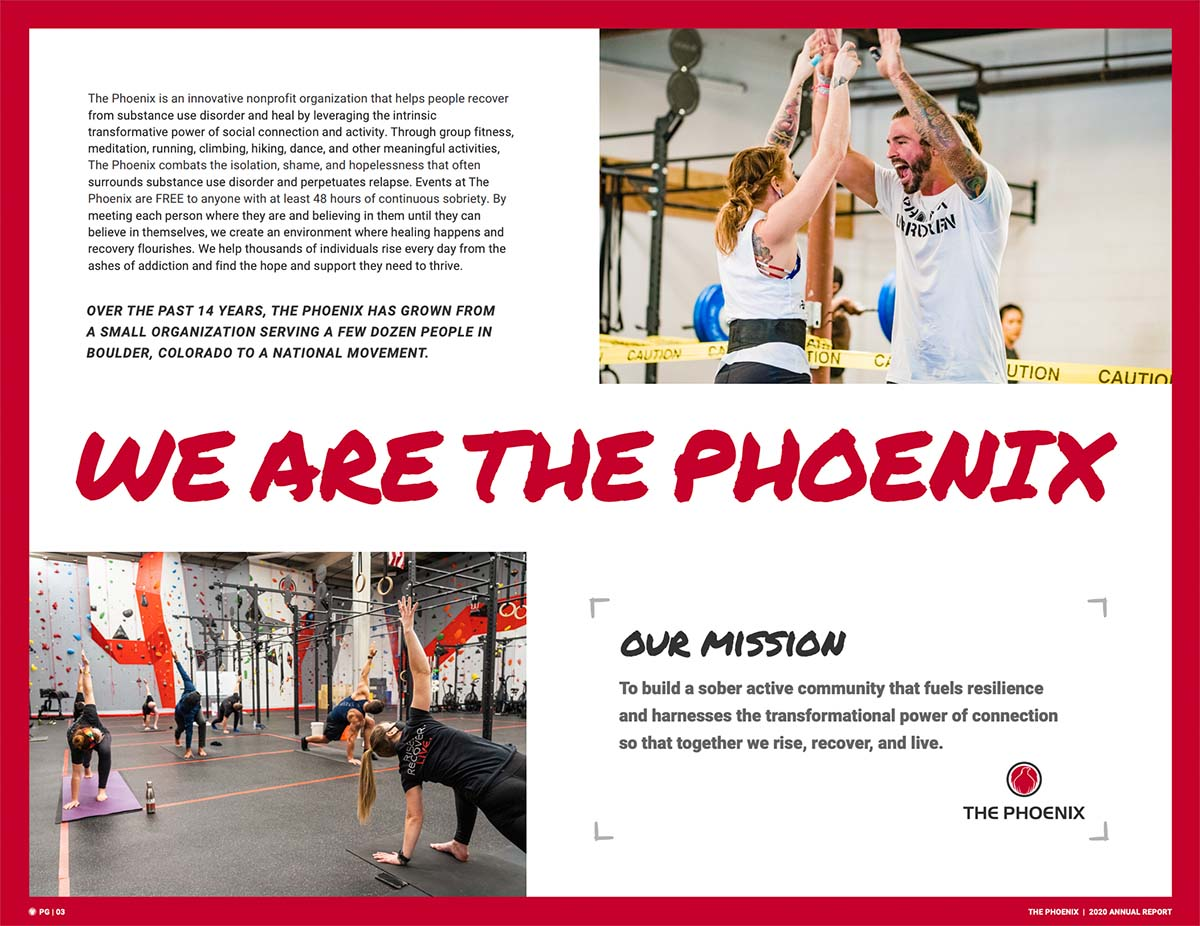 The Phoenix Annual Report Example