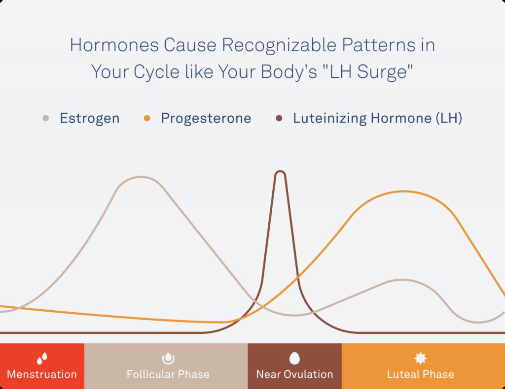 Oura ring hormones