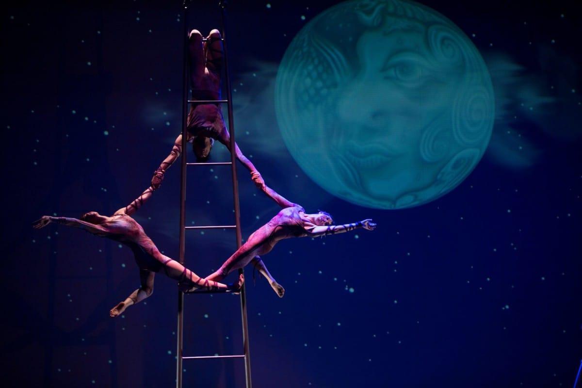 Circus Luminous